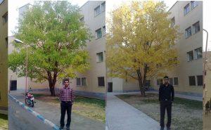 اسماعیل بهشتی دانشگاه صنعتی اصفهان